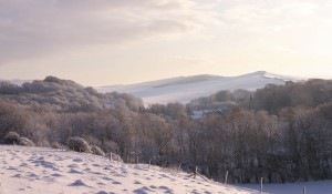 northcourt snow 2010